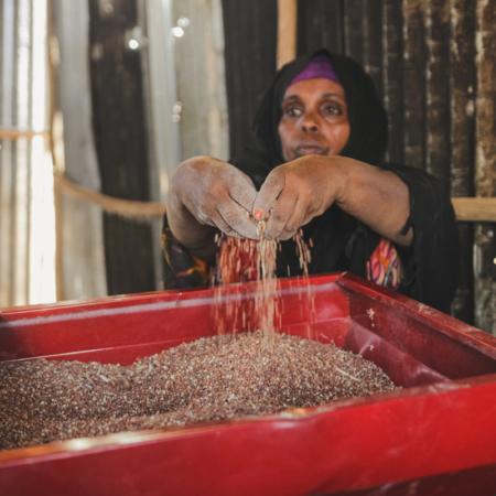 Getreideanbau ist ein Schwerpunkt in Ostafrika