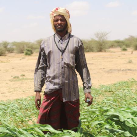Durch Schulung und Training können Menschen lernen mit der Dürre in Ostafrika umzugehen