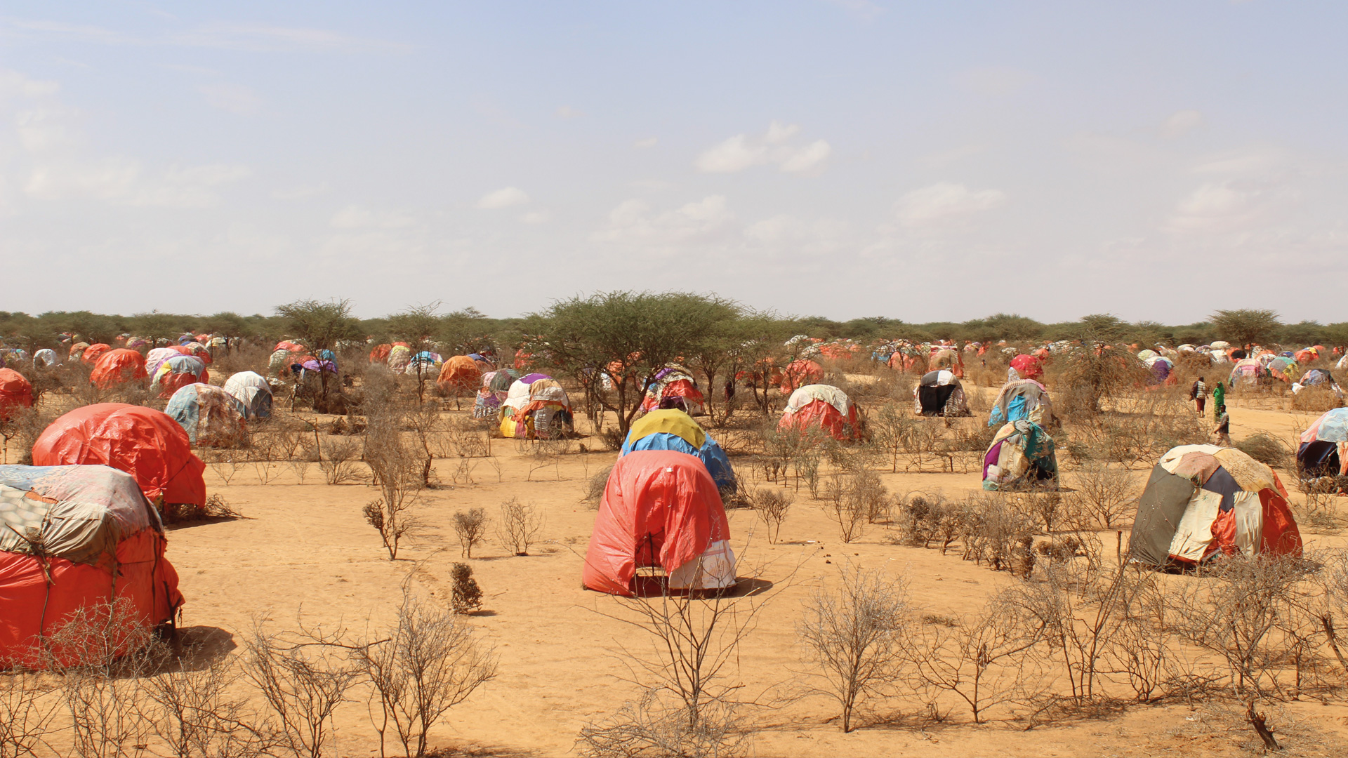 Die Dürre in Ostafrika