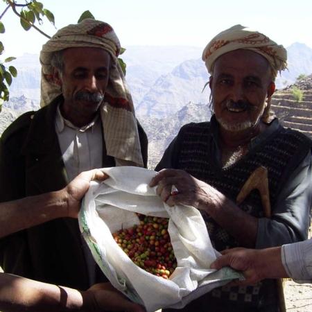 Wir unterstützen lokale Bauern bei dem Anbau und der Ernte von Mokka-Bohnen