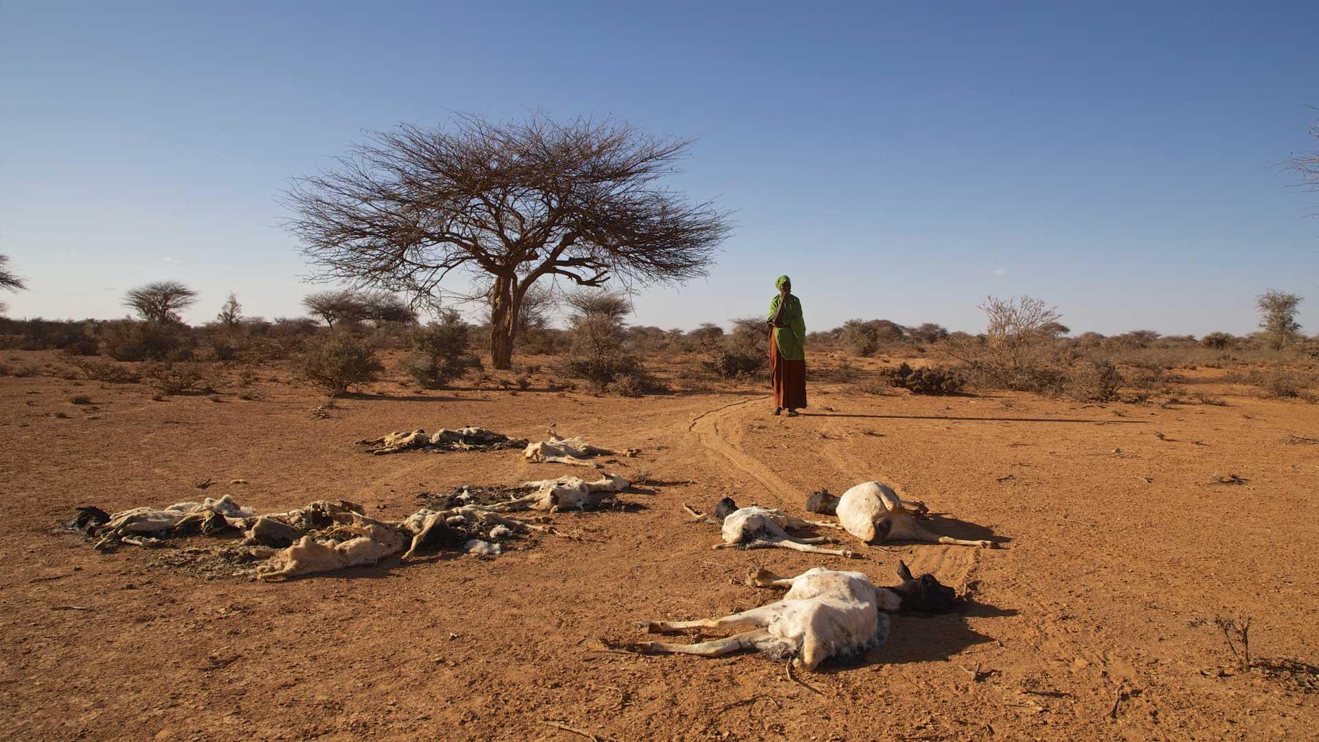 Hilfsprojekte in Ostafrika
