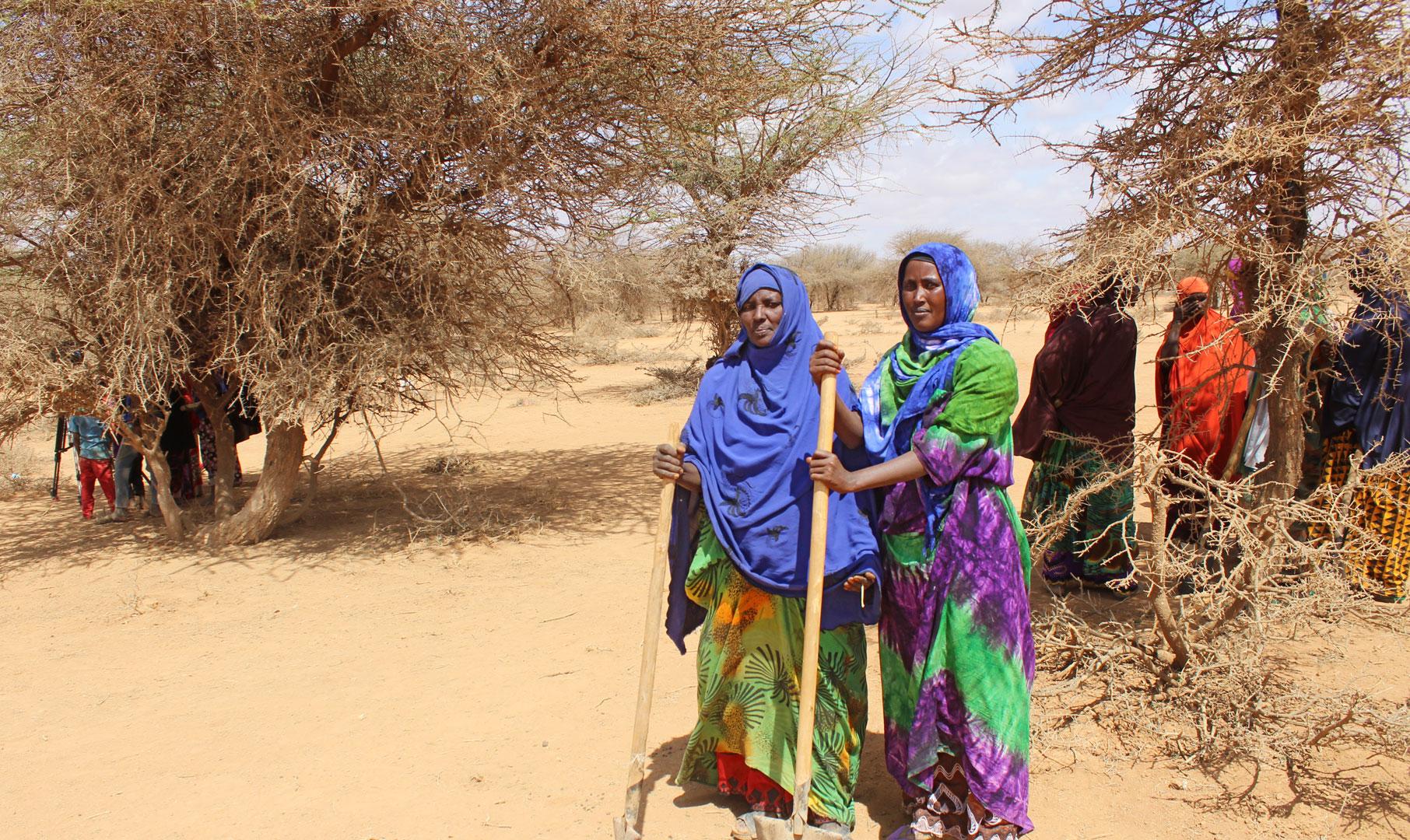 Projektpatenschaft - Werde Pate für Familien in Entwicklungsländern