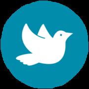 Frieden in Pakistan - Frieden stiften